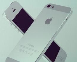 福吉应用案例:苹果股份有限公司